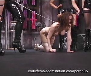 Busty Pamela acts like a good dog..